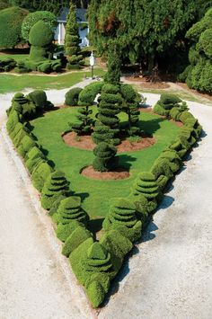 This island graces Fryar's driveway. He trims the hedge, made of Yaupon hollies, once a month.  Pearl Fryar  self taught topiary artist