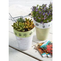 Decorate clay pots with paints, stamps, and ink for a trendy look.