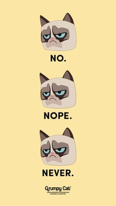 """""""No. Never. Nope"""" by Grumpy Cat would be a fun wallpaper for your iphone some sarcastic and grumpy attitude to show off   available for all phone cases, laptop sleeves, tablet and eReader covers"""