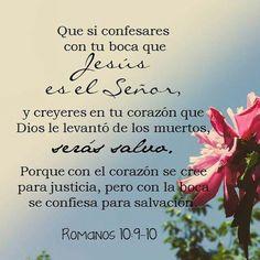 Jesús Salvador                                                                                                                                                                                 Más