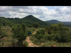 Everything you want to know about South Africa you will find in this channel! The Groenkloof Nature Reserve, located adjacent to the Fountains Valley at the . Fountain Valley, Pretoria, Nature Reserve, South Africa, Tourism, Wildlife, Explore, Travel, Viajes