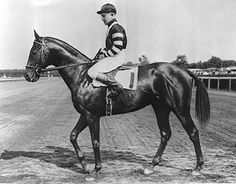 1937 Triple Crown winner War Admiral, the son of one of the greatest horses of all time -- Man O' War.