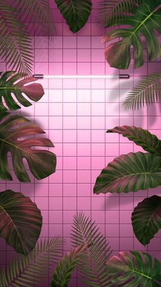 Looking for for ideas for background?Navigate here for aesthetic wallpaper ideas. These interesting background pictures will bring you joy. Tumblr Wallpaper, Pinky Wallpaper, Pink Wallpaper Backgrounds, Wallpapers Tumblr, Wallpaper Iphone Neon, Wallpaper For Your Phone, Aesthetic Iphone Wallpaper, Screen Wallpaper, Cute Wallpapers