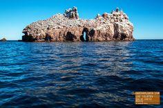 Los Islotes in the Sea of Cortez Mexico