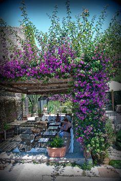 Ischia   Garden Cafe, Castillo