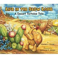 Cute desert tortoise story book.