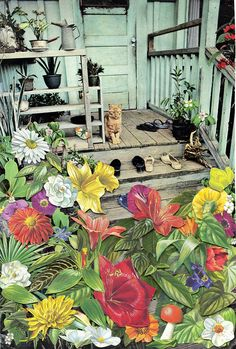 CAT by ben///giles, via Flickr