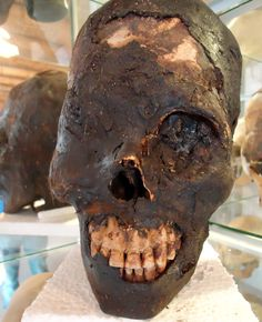 Often the mystery of the elongated skulls of Paracas is written off as intentional body modification, possibly practiced for aesthetic reasons. This is impossible, however. With artificial cranial deformation, which is a practice of body alteration that cultures all over the world have practiced in the past, the skull is elongated by head flattening or head binding when it is still malleable in the first months or years of life. The elongated skulls of Paracas are not only longer, but they…