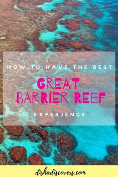 Planning a trip to the Great Barrier Reef in Australia but don't know where to start? Check out this guide to help you plan your trip with ease. Brisbane, Melbourne, Sydney, Australia Travel Guide, Visit Australia, Australia Honeymoon, Australia Visa, Australia Trip, Victoria Australia