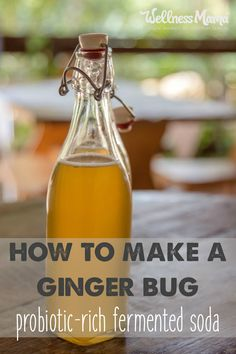 Fermented foods and drinks contain probiotics that boost gut bacteria. Probiotic rich recipes for sauerkraut, water kefir, kvass, kombucha and ginger ale. Ginger Ale Recipe, Homemade Ginger Ale, Homemade Syrup, Sangria, Ginger Bug, Fresh Ginger, Ginger Soda, Ginger Fizz, Probiotic Drinks
