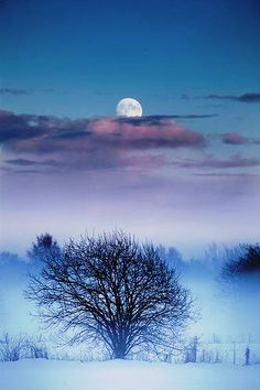 Moon by Torre Heggelund (no location given). No idea who changed the colours.