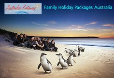 # Family Tour Packages Australia  Australia Getaway offers #Family #HolidayTourPackages to Australia. Enjoy your #vacation with your family in Australia. Explore Gold Coast, Cairns, Kuranda Rain forest Great Barrier Reef in Australia.  for more info about tour log on: http://www.australiagetaway.com.au/tour-details/55/106/Family-Fun-in-Australia