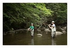 Whether you're new to fishing or an experienced angler, Gatlinburg and the streams of the Great Smoky Mountains are great places to cast a line.