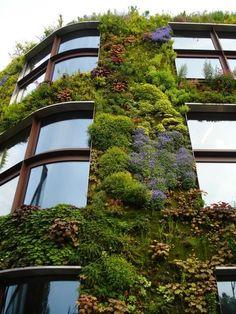 Vertical garden wall as exterior wall veneer Green Architecture, Landscape Architecture, Landscape Design, Garden Design, Sustainable Architecture, Urban Landscape, Sustainable Building Design, Environmental Architecture, Natural Architecture