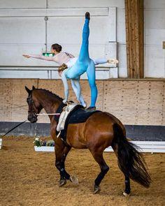 Vaulting, Horses, Instagram, Animals, Animales, Animaux, Animal, Animais, Horse