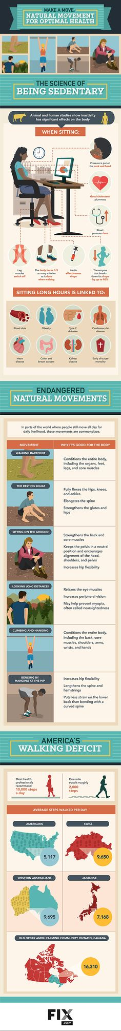 Natural Movement for Optimal Health Natural Movement For Optimal Health Infographic shows why hikers are healthy! Natural Movement for Optimal Health Natural Movement For Optimal Health Infographic shows why hikers are healthy! Health And Nutrition, Health And Wellness, Health Care, Health Fitness, Fitness Infographic, Health Infographics, Chiropractic Therapy, Body Of Evidence, Health Symbol