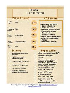 [Mise à jour] : Fiche pratique du 3e mois de grossesse : côté bébé, côté maman, les examens et la to-do-list des choses à ne pas oublier ! A insérer dans son agenda ou carnet de grossesse ! #bulletjournal #bujo #printable #pregnancy #grossesse