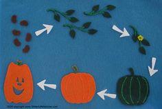 Felt Board Stories: Pumpkin Growth Halloween Preschool Science Activity