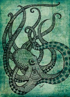 octopus by Daniela Silva, via Behance