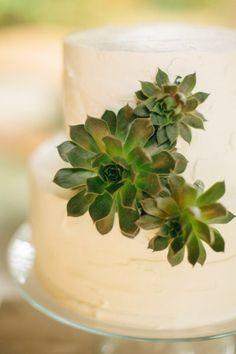 succulent cake Photography by Angela Shae / angelashae.com, Design, Styling   Stationery by Anastasia Marie / anastasiamariecards.com