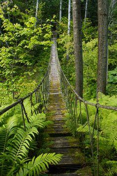 A story of Three Garden Tours: The hanging rope bridge at Les Quatres Vents, Quebec, Canada