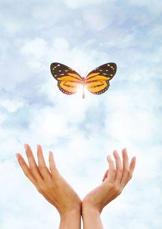 La naturaleza en tus manos