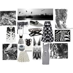 """Black and White"" by danicechernandez on Polyvore"