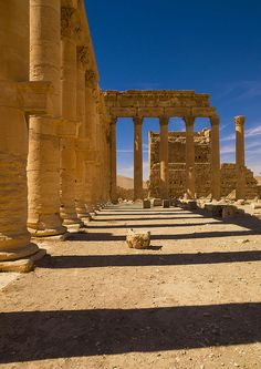 The Ancient Roman city of Palmyra, Syria by Eric Lafforgue, via Flickr