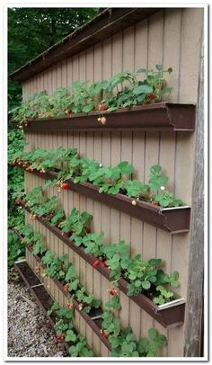 ✔ 45 diy raised garden bed plans & ideas you can build 45 ⋆ newport-internat. - ✔ 45 diy raised garden bed plans & ideas you can build 45 ⋆ newport-internati… -