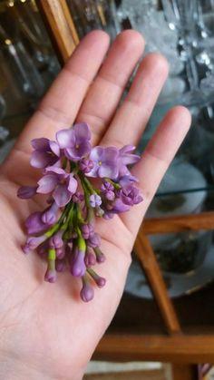цветочки .. и живые и нет..