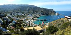 Top 5 Reasons to Plan a Weekend Getaway to Catalina Island | Travel Tips for Families