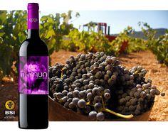 Las Bodegas San Isidro de la DOP Jumilla llevan desde 1934 elaborando vinos. Durante todo éste tiempo, el esfuerzo de sus cooperativistas se ha visto recompensado por el reconocimiento a vinos de altísima calidad
