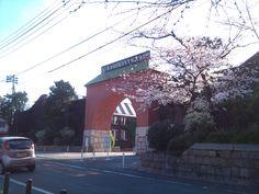 倉敷アイビースクエア と 桜