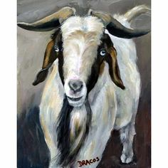 Hey, I found this really awesome Etsy listing at https://www.etsy.com/listing/71337127/boer-goat-art-blue-eyes-and-beard-farm