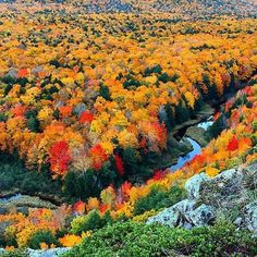 Soon, peak colors like this will appear at the Porcupine Mountains in the U.P. Plan a trip there today! 📷; @catchupandrelish
