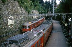 Train Suisse, Trains, Swiss Railways, Locomotive, Beauty, Iron, Train Stations, World, Swiss Guard