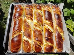 Tvarohové koláče (fotorecept) - obrázok 5 Hot Dog Buns, Hot Dogs, Bakery, Food And Drink, Bread, Basket, Kuchen, Brot, Baking