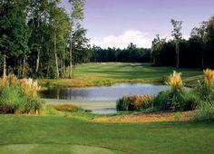 south carolina golf courses | ... South Carolina Golf Courses - Golf Courses in Charleston South