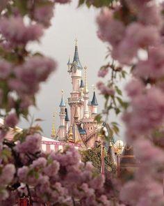 Welcome to Disneyland land of Dreams Disney World Pictures, Cute Disney Pictures, Disney World Magic Kingdom, Disney Magic, Photographie Portrait Inspiration, Disney Background, Pinturas Disney, Disney Phone Wallpaper, Disney World Trip