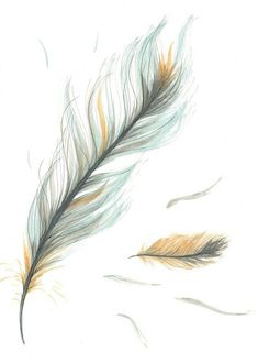 Items similar to Original Drawing/Illustration - Blue and Brown Feather on Etsy - Love this in one dark colour just the one on the left - Feather Drawing, Watercolor Feather, Feather Painting, Feather Art, Feather Tattoos, Small Feather Tattoo, Tattoo Drawings, I Tattoo, Cool Tattoos