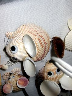 Shell mice made from cockle shells and kitten paw shells.