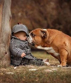 The major breeds of bulldogs are English bulldog, American bulldog, and French bulldog. The bulldog has a broad shoulder which matches with the head. Dogs And Kids, Animals For Kids, I Love Dogs, Baby Animals, Funny Animals, Cute Animals, Bulldog Puppies, Cute Puppies, Cute Dogs
