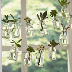 White Flowers Glass Bottle Garland bottle crafts 60 Creative DIY Glass Bottle Ideas for Your Outdoor Living Space Small Glass Bottles, Recycled Glass Bottles, Glass Bottle Crafts, Glass Jars, Sea Glass, Mason Jars, House Plants Decor, Plant Decor, Decoration Plante