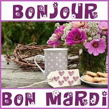 humour image drole bonjour – RechercheGoogle Bon Mardi, Place Cards, Place Card Holders, Recherche Google, Buen Dia, French Foreign Legion, Good Morning Picture, Funny Pictures, Beautiful Birds