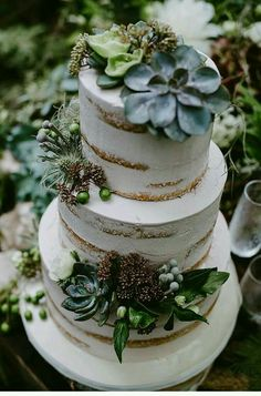 Succulent cake DIY Grown from the Earth shoot, - photo: Destiny Dawn Photography - Hochzeitsguide Pretty Cakes, Beautiful Cakes, Amazing Cakes, Elegant Wedding Cakes, Rustic Wedding, Elegant Cakes, Diy Wedding Cake, Floral Wedding, Lace Wedding