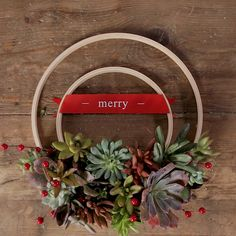 embroidery hoops, real or faux succulents and holiday accents for a fresh and fun take on the traditional Christmas wreath.Use embroidery hoops, real or faux succulents and holiday accents for a fresh and fun take on the traditional Christmas wreath. Holiday Wreaths, Holiday Crafts, Christmas Crafts, Christmas Decorations, Christmas Holiday, Christmas Trees, Winter Wreaths, Cowboy Christmas, Christmas Wreaths To Make