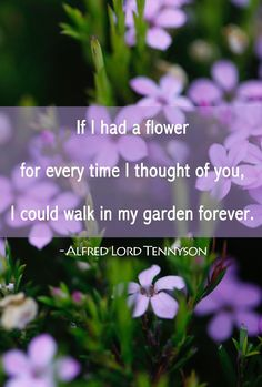 If I had a flower for every time I thought of you, I could walk in my garden forever... ~Alfred Lord Tennyson