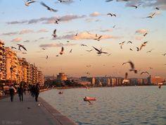 Όταν αγγίζουν δάχτυλα ψάχνοντας φως, Ώρες μικρές, μεταμεσονύχτιες, λάμπες σβηστές, (Εωθινά σκηνώματα της Άνω-Νύχτας.) Η Θεσσαλονίκη μπαίνει στο σώμα της, Η Θεσσαλονίκη σβήνει το βλέμμα της, απογυμνώνεται. Πιο από μέσα φωτεινή από τη φωτισμένη μέρα. Ήλιους ανάβει αποβραδίς σε σύσκιο μεσουράνημα.  Ημιδιαφανείς αμφιβολίες, ημίθαμπα, αστραπές, Αχνή, θρυμματισμένη πάχνη αραχνοΰφαντη.  Κανείς δεν υποπτεύεται που φέγγουν τα χέρια.  Σα να 'μαστε από μέσα διάφωτοι και δεν το ξέρουμε... Γιώργος…
