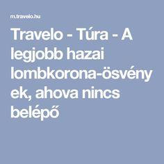 Travelo - Túra - A legjobb hazai lombkorona-ösvények, ahova nincs belépő