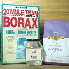The Thriftiness Miss: DIY Ant Killer -  1 cup warm water, 1/2 cup sugar, 2tbs borax. Mix till dissolved. Soak a cotton ball in the solution and place in the line of the ants.